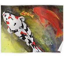 Playful painting of colorful koi fish swimming in a pond Poster