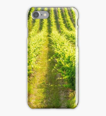 Tuscany, Chianti vineyards iPhone Case/Skin