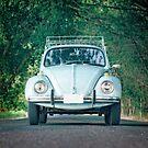 Classic Blue Beetle Car by Edward Fielding