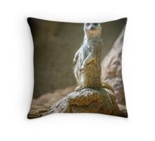 Ive got my eye on you Throw Pillow