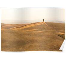 tuscany fields near siena Poster