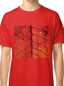Abstract Autumn Leaf Classic T-Shirt