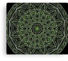natural star Canvas Print