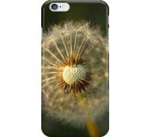 Broken Dandelion At Sunset iPhone Case/Skin