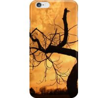 Tree Dancing In The Sunset iPhone Case/Skin