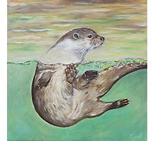 Playful River Otter Photographic Print