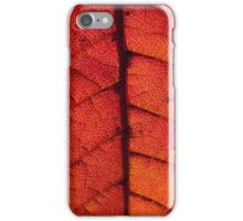 Abstract Autumn Leaf iPhone Case/Skin