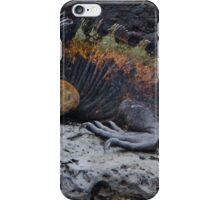 Large Marine Iguana iPhone Case/Skin