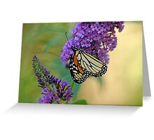 Sipping Nectar Greeting Card