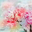 The Passion of Peonies by Bunny Clarke