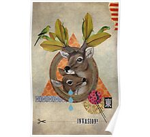 Animal Collection -- Oh Deer Poster