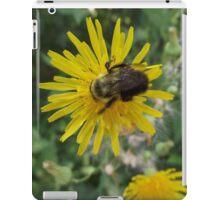 Bee on Flower Macro iPad Case/Skin