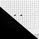 Noir et blanc by Richard Fortier