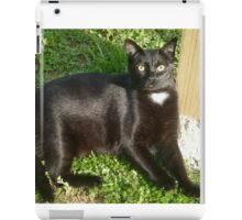Mia - the Cat with a Heart  iPad Case/Skin