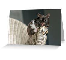 der kleine Hamster meiner Tochter Greeting Card
