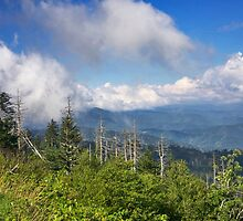 Smoky Mountains by Maryna Gumenyuk