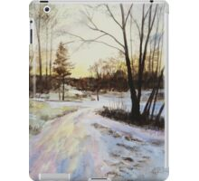 Sunset Reflections On Ice iPad Case/Skin