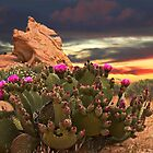 ?????  CACTUS PLANT @ VALLEY OF FIRE LAS VEGAS ?????  by ✿✿ Bonita ✿✿ ђєℓℓσ