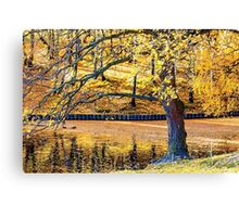 The Magic Of Golden Autumn Canvas Print