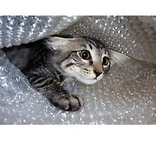 Mikino - Bubble-wrapped 2 Photographic Print