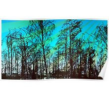 Woodland Sky Poster