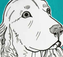 Cocker Spaniel Portrait Sticker
