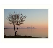 Soft, Pink Morning on the Lake Shore Art Print