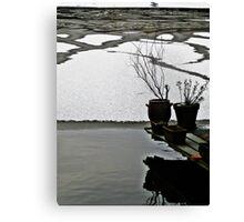 Frozen winter VIII Canvas Print