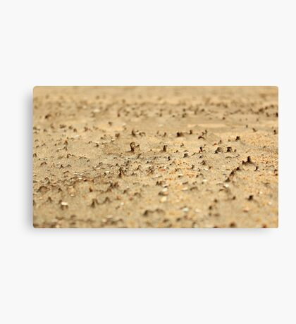 Miniatures on the sand Canvas Print