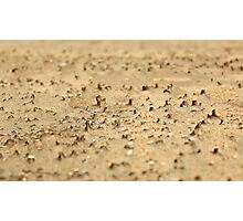 Miniatures on the sand Photographic Print