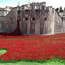 Tower of London Remembers WWI by Ludwig Wagner