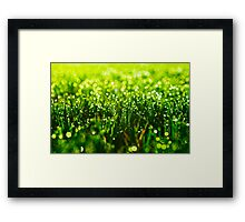 Beauty in Green Framed Print