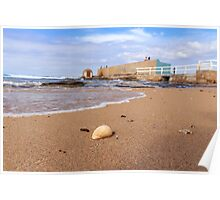 Sun, Sand, Surf and Shell in Newcastle Poster