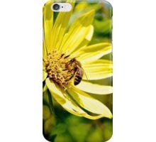 Andrena dorsata  iPhone Case/Skin