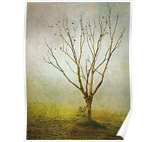 Lonely tree! Poster