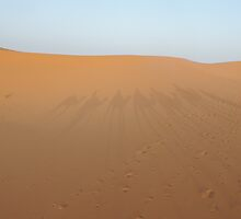 Sahara desert at Morroco. by Panayiotis Zavros