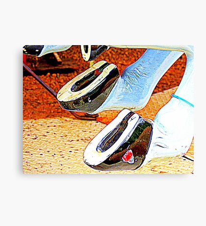 Horsey Shoes 4 Good LUCK ! Canvas Print