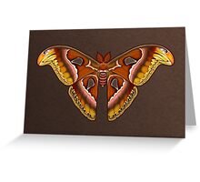 Atlas Moth Greeting Card