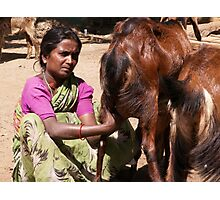 Woman milking the family goat, Hampi, India Photographic Print