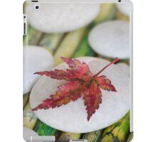 Autumn Zen iPad Case/Skin