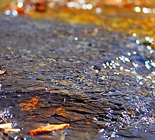 Riverbed  by StonedOgraphy