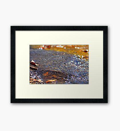 Riverbed  Framed Print