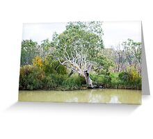 A Riverbank Beauty Greeting Card