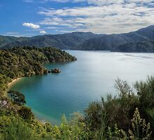 Queen Charlotte Sound by Jan Pudney