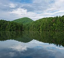 Water, Trees & Sky by Evelyn Laeschke