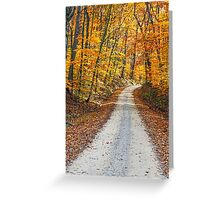 Country Road and Fall Colors Greeting Card