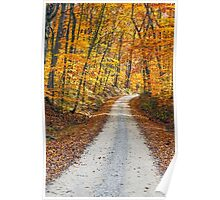 Country Road and Fall Colors Poster