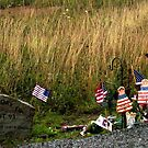 Flight 93 Early Memorial by © Loree McComb