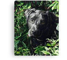 Cute Black Lab puppy, painting Canvas Print