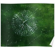 Spider Web with Spider, painting Poster